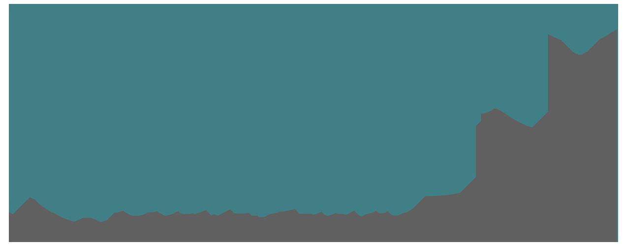 Hochzeitsfotografie Retina Logo